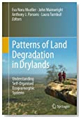 Patterns of Land Degradation in Drylands: Understanding Self-Organised Ecogeomorphic Systems