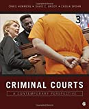img - for Criminal Courts: A Contemporary Perspective book / textbook / text book