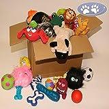 10 Teile XXL Spielpaket für Hunde, Latex, Gummi, Plüsch, SONDERAKTION