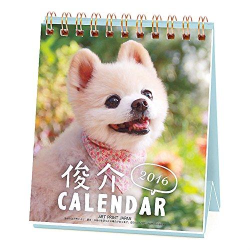 A.P.J. 俊介 週めくりミニ 2016年 カレンダー 卓上 No.030 1000066706