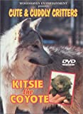 echange, troc Cute and Cuddly Critters: Kitsie the Coyote [Import USA Zone 1]
