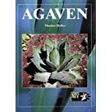 Agaven