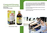 CEREGUMIL-Pure-Korean-Ginseng-Liquid-6-Year-Roots-Extract-15-mg-Ginsenosides-Fight-Physical-Fatigue-Boost-Mental-Focus-Daily-Extra-Energy-Performance-Concentration-Natural-Energy-250ml-Bottle