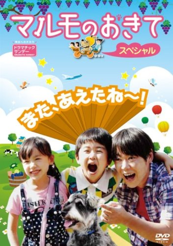 マルモのおきて スペシャル [DVD]の画像