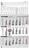 3-Monatskalender groß 2017 - Wandplaner / Bürokalender (30...
