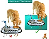 "Mr. Peanut's Pet Food Mat, Premium FDA Food Grade Silicone, BPA Free, 19"" X 12"" Flexible and Easy to Clean Feeding Mat, Protects Your Floors From Food And Water Spills (Teal Green)"