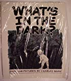 What's in the Dark (0938349678) by Shaw, Charles