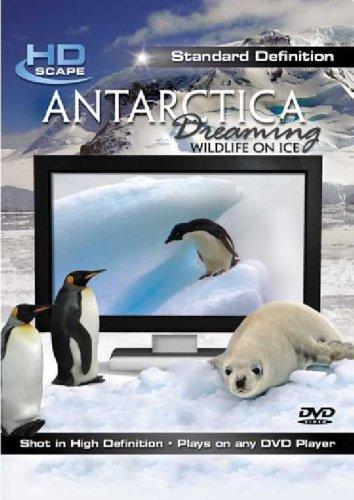 antarctica-dreaming-wildlife-on-ice-sd-2007-edizione-regno-unito