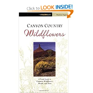 Canyon Country Wildflowers