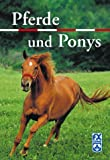 img - for Pferde und Ponys. book / textbook / text book