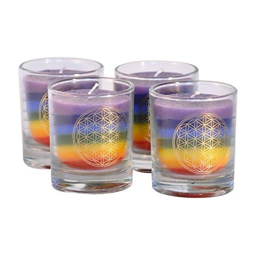 Palm-Light-4041678001827-Nuance-Kerze-4-er-Set-Palmwachs-Kerze-mehrfarbig