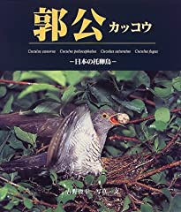 郭公—日本の托卵鳥