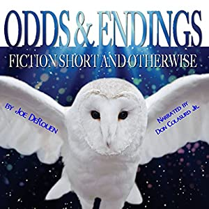 Odds and Endings Audiobook