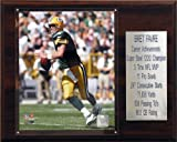 NFL Brett Favre Green Bay Packers Career Stat Plaque at Amazon.com