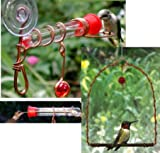 Single Tube Window Hummingbird Feeder and Hummingbird Swing