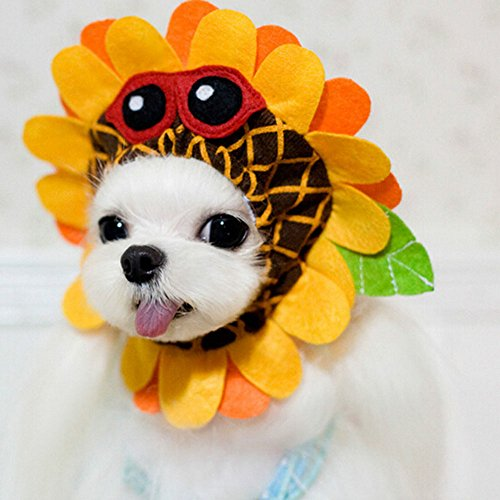 Bro'Bear Pet Funny Sunflower Hat with Glasses Design for Small Dogs & Cats Party Costume Headwear Orange (Large)