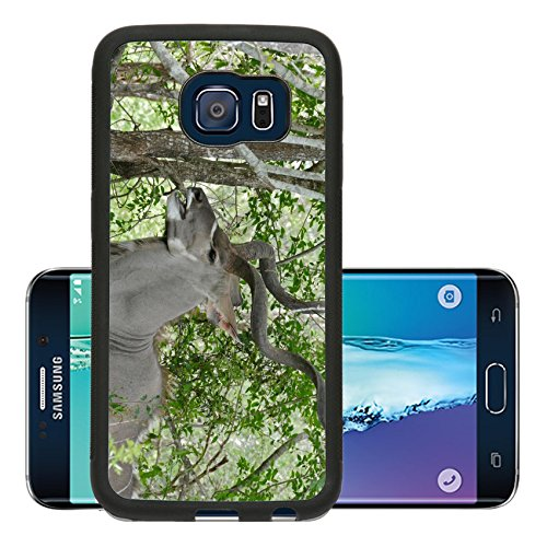 Liili Premium Samsung Galaxy S6 Edge Aluminum Backplate Bumper Snap Case Greater Kudu Tragelaphus strepsiceros Image 16273192594 (Kudu Edge compare prices)