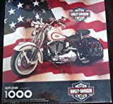 Springbok Harley-Davidson Motorcycles Ji...