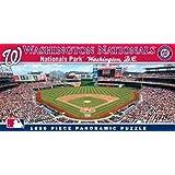 MasterPieces MLB Washington Nationals Stadium Panoramic Jigsaw Puzzle, 1000-Piece