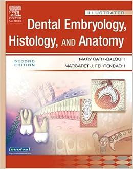 Dental embryology histology and anatomy
