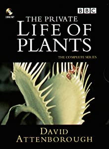 The Private Life of Plants [UK Import] [2 DVDs]
