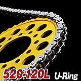 Big-One(ビッグワン) バイク チェーン 交換 520-120L Oリング カシメジョイント 強化Type シルバー 29540