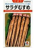 ゴボウ タキイ サラダむすめ タキイのゴボウ種です
