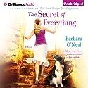 The Secret of Everything: A Novel (       UNABRIDGED) by Barbara O'Neal Narrated by Angela Dawe