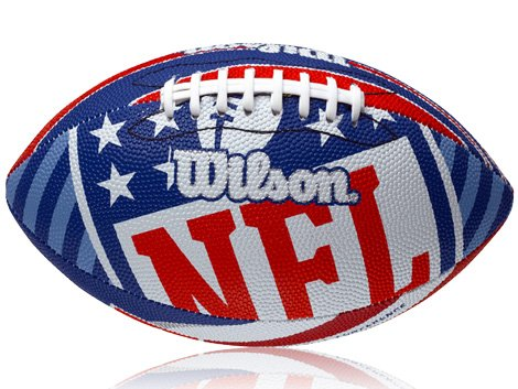 Wilson NFL Logo American Football