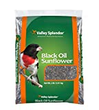 Valley Splendor Black Oil Sunflower Seeds Bag, 2 lb