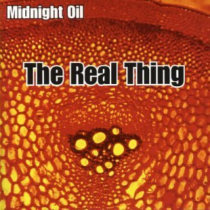 Midnight Oil - Real Thing - Zortam Music