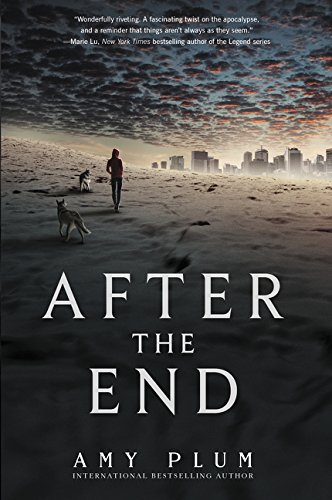 Book Cover: After the End