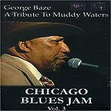 Chicago Blues Jam /Vol.3 [Reino Unido] [DVD]