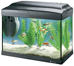 ferplast cayman 40 classic aquarium 41 5 x 21 5 x 34 cm 21 liter black co uk pet
