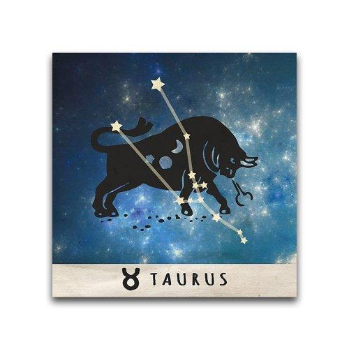 16x16-Taurus-Zodiac-Constellation-Printed-Metal