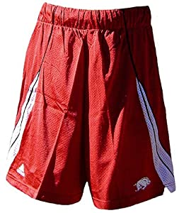 Arkansas Razorbacks 2008 College Nylon Mesh Cardinal Screen Printed Replica Basketball Shorts By Adi (L=34-35)