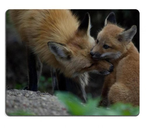 animals-baby-foxes-tod-foxhound-mouse-pads-customized-made-to-order-support-ready-9-7-8-inch-250mm-x