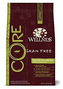 Wellness Grain-Free Dry Dog Food for Adult Dogs, CORE Reduced Fat, 26-Pound Bag