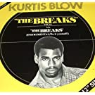 The Breaks:  Vocal / Instrumental - Do It Yourself