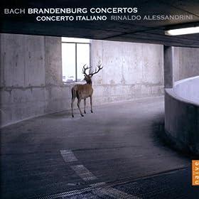 Concerto n� 1 BWV 1046 in F major (Menuet ab Inizio)