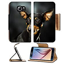 buy Msd Samsung Galaxy S6 Flip Pu Leather Wallet Case A Little Doberman Thinking Over A Dark Background Image 22856384