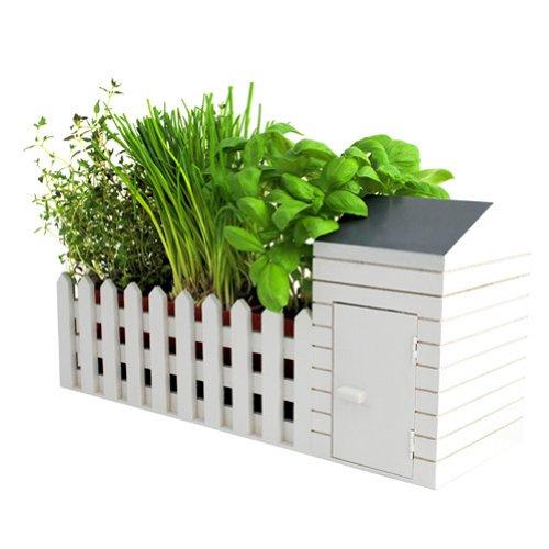 pflanzen samen kaufen preisvergleiche. Black Bedroom Furniture Sets. Home Design Ideas