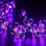 lederTEK Solar Fairy String Lights 21ft 50 LED Purple Blossom Decorative Gardens, Lawn, Patio, Christmas Trees, Weddings, Parties, Halloween Lights Decoration, Indoor and Outdoor Use (50 LED Purple)