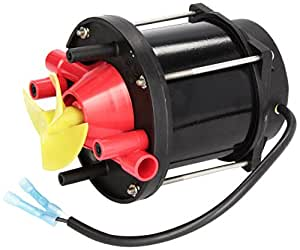 Pentair P12141 Pump Motor Assembly Replacement