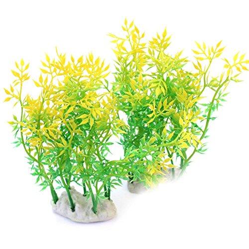 2-stk-13cm-Aquarienpflanzen-Wasserpflanzen-Deko-Wasserflora-Spa