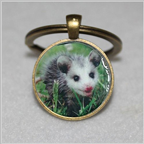 Opossum keychain Adorable Pink Nosed Baby Opossum Resin Metal Round Pendant keychain
