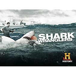 Shark Wranglers Season 1