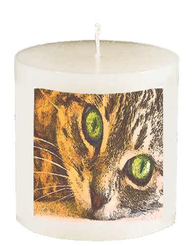 Brucie the Cat - Watching You- 3 Inch Vanilla Scented Pillar Candle