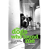 Dogs Who Found Me: What I'Ve Learned From Pets Who Were Left Behind ~ Ken Foster