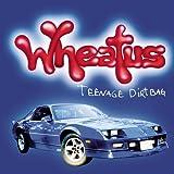 Teenage Dirtbag (Explicit Album Version) [Explicit]
